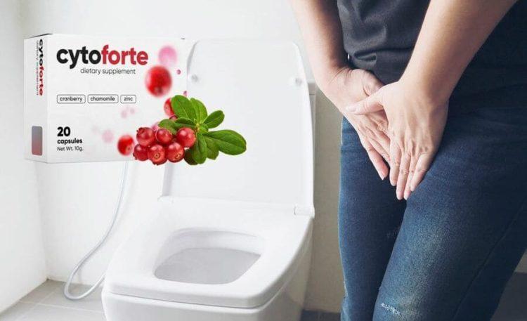 Tabletta Cyto Forte: Krónikus cystitise van? Összegyűjtöttünk egy cikket az új központról, hogy leküzdjük ezt az állapotot. Menedzsment 2019